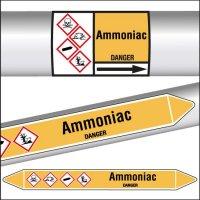 Marqueurs de tuyauterie CLP Ammoniac