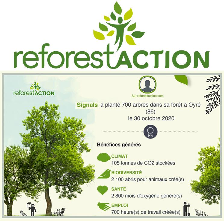 Logo reforest
