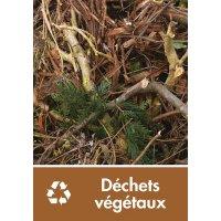 Signalétique recyclage - Déchets végétaux