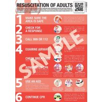 Resuscitation for Adults Guidance Poster