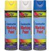 Paints & Applicators
